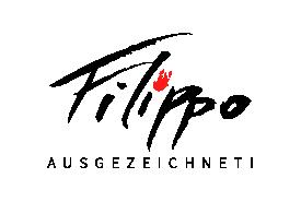 schnellzeichner und karikaturist filippo für messe, hochzeit und event